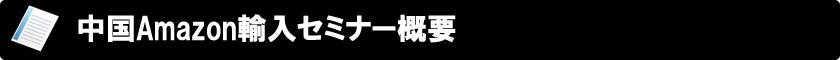 中国Amazon輸入 タオバオ・アリババから仕入れる 出版記念セミナー概要